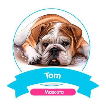 Tom - Mascota