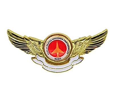 Pin Aviador